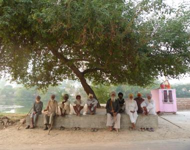 Indian men sitting under a tree