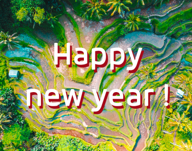 Text : Happy New year; background : Indonesia, rice
